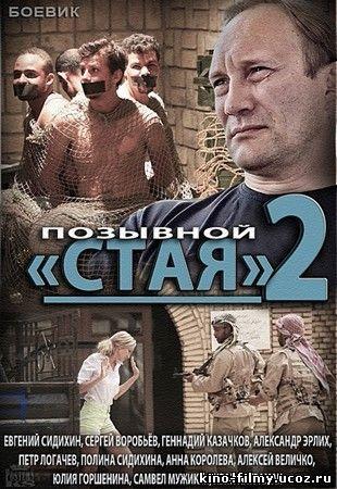 Позывной «Стая» сезон 1,2 (2013) смотреть онлайн или ...